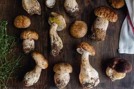Raw edible penny bun porcini mushrooms on rustic dark wooden background, top view
