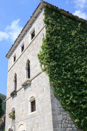 enveloped: Natural ornament: Building is enveloped by ivy Editorial