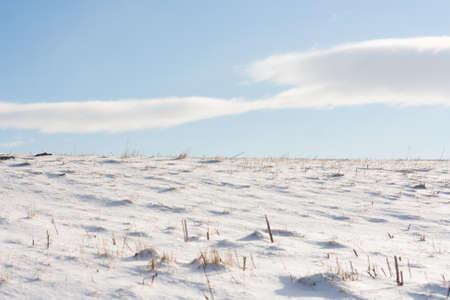 Winter background: snowy horizon and blue sky Stock Photo - 12000985