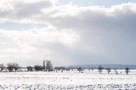 Beautiful winter lanscape Stock Photo - 12000978