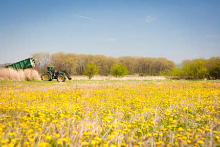 Spring rural scenery  tractor standing at the edge of a dandelion meadow Stock Photo - 13422476