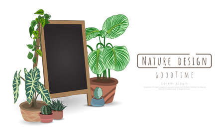 Potted plants and Black board for writing messages on white background, isolated objects,  message area, Hand drawn, Vector drawn illustrations.