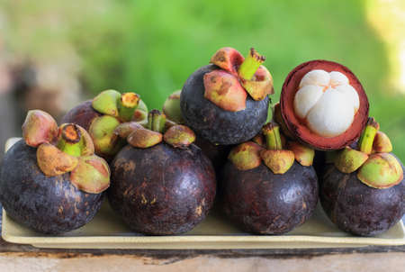 Mangosteen Tropical Fruits Close up photo