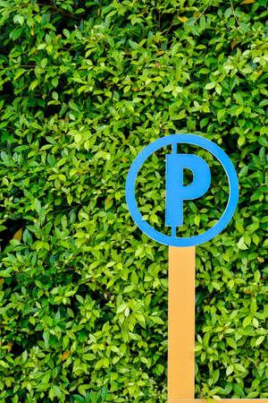 traffic ticket: Signs parking. green leaf background