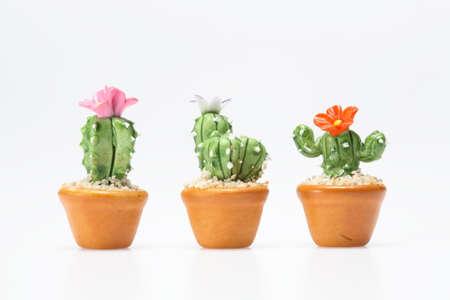 toy cactus Stock Photo