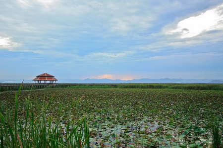 sam roi yod national park, thailand