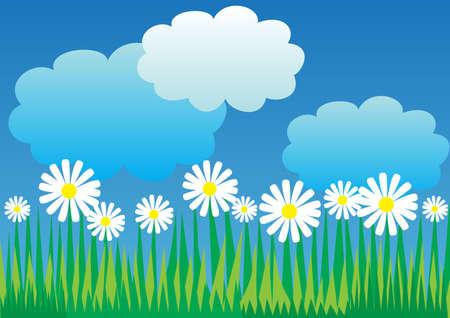 cumulus cloud: spring background