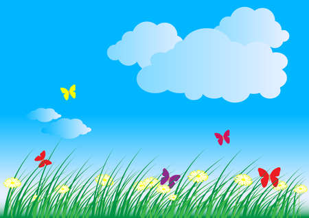 oxeye: Summer - Spring Nature Background: Grass, Butterflies, Daisy Flowers and Blue Sky