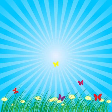 Sommer - Frühling Natur Hintergrund: Grass, Schmetterlinge, Daisy Blumen auf blauem Hintergrund Standard-Bild - 9904145
