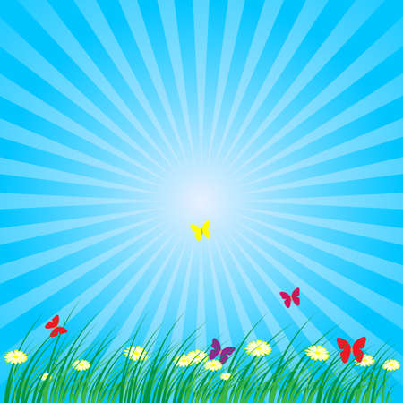 Summer - Spring Nature Background: Grass, Butterflies, Daisy Flowers on Blue Background 矢量图像