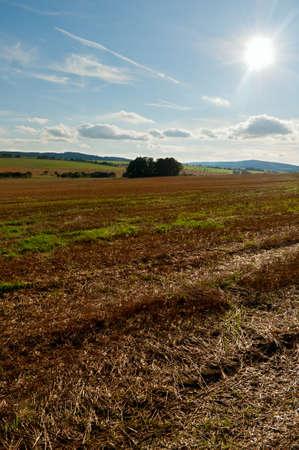 Rural Landscape - Harvested Agricultural Field and Blue Sky