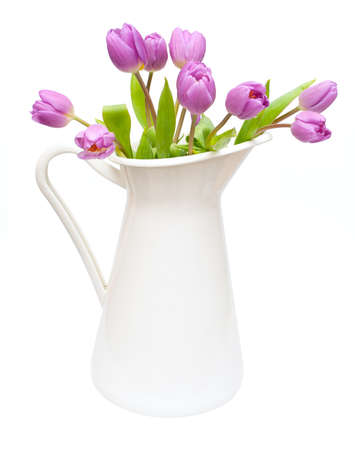 Violet Tulips Bouquet in White Pitcher Isolated on White Background photo