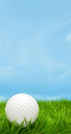 Golf Ball in Grass and Blue Sky photo