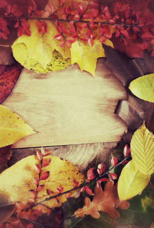 vintage look: Autunno Sfondo - Colore foglie di autunno su sfondo in legno - look vintage