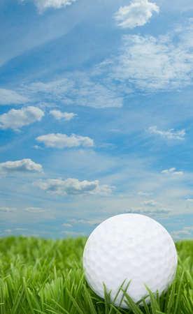 blue summer sky: Golf Ball in Grass - Blue Summer Sky in Background