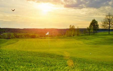 backlite: Golf Puttinggreen