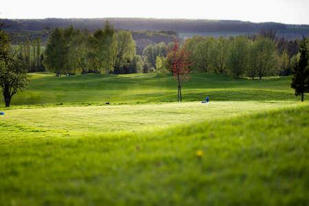 backlite: Golfcourse - tee