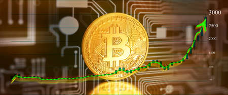 bitcoins - bit coin BTC the new virtual money with chart