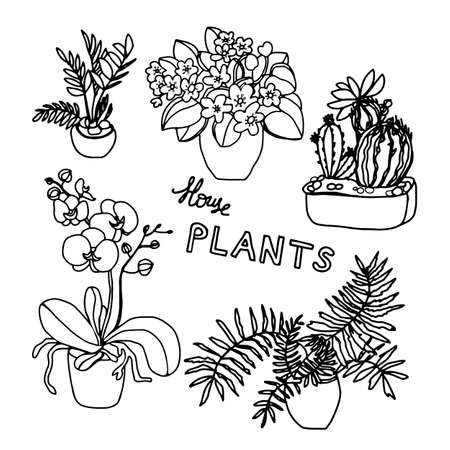 Set of Flower in Pots Hand Drawn Doodle. Bundle Nature Flower on Plant Pots. Beautiful Home Decorations Isolated on White Background.