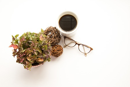 Glasses and floral on white shot overhead.
