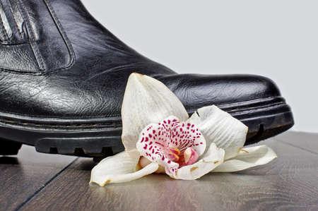 Crashed flower
