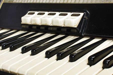 bandoneon: Accordion keyboard close up