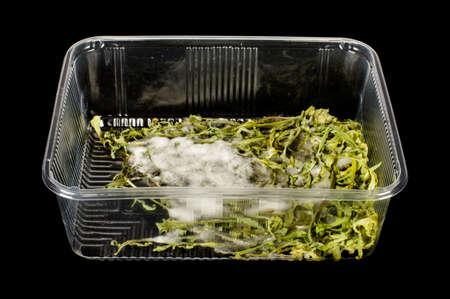 Moldy salads on the black background photo