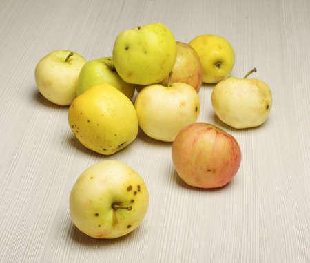 A betakarítás az alma a fa padló