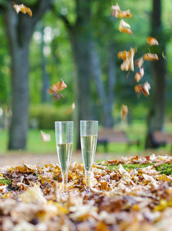 Two plastic champagne glass in the autumn park Stock Photo