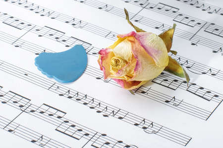 guitar pick: Faded rose bloom and guitar pick on sheet music notes