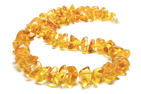 round collar: Beautiful honey color amber necklace isolated with clipping path