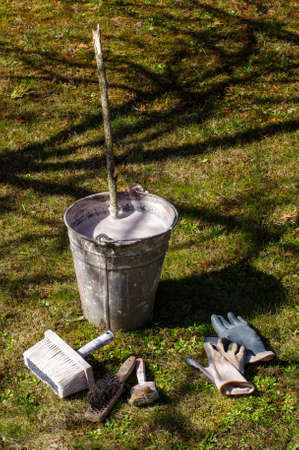 blanch: Early spring gardening equipment for tree whitewashing Stock Photo