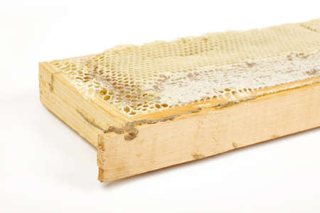 beekeeping: Beekeeping concept Stock Photo