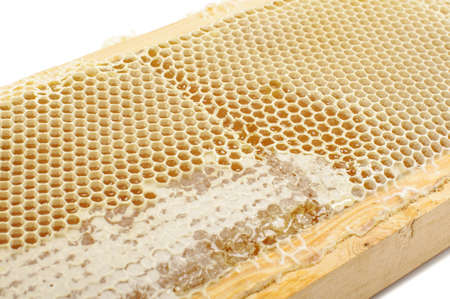 honey comb: Abstract photography of honey comb close up Stock Photo