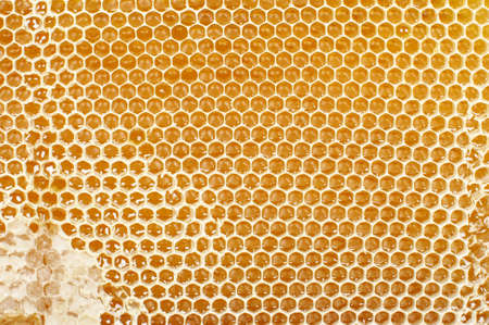Abstract honeycomb pattern close up
