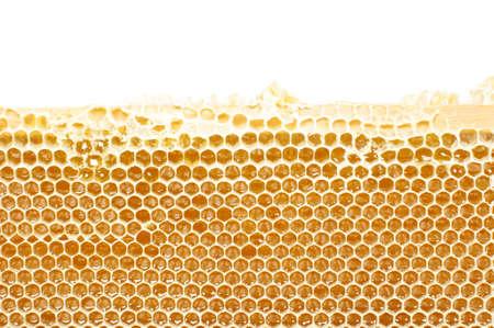 colmena: Nido de abeja en el marco de madera de cerca con copyspace Foto de archivo
