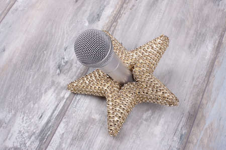 superstar: Superstar concept still life with microphone and golden star