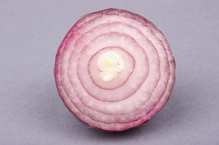 cross section: Macro close up of red onion cross section