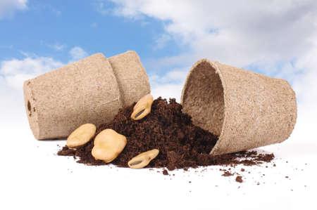 peat pot: Agriculture concept