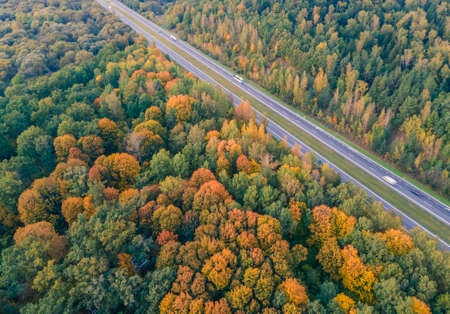 Aerial view of forest full of autumn colors with highway crossing it