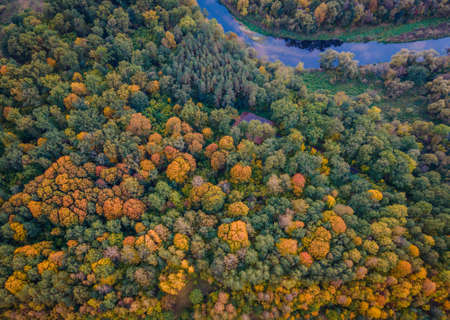 Aerial view of forest full of autumn colors with river crossing it Stock fotó