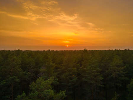 Aerial view of an orange sunset in the horizon over the forest