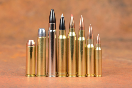 Loaded Cartridges. Stock Photo