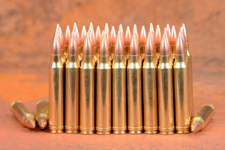 mag: Loaded cartridges. 300 Win Mag.