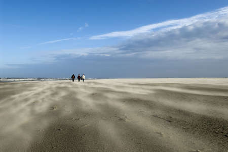 winterday: a sunny winterday on Schiermonnikoog beach with sand storming over the beach