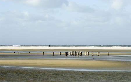 winterday: a sunny winterday on Schiermonnikoog beach showing old beach heads