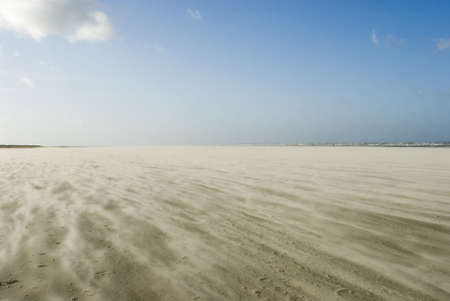 indentation: a sunny winterday with strong winds, showing a sandstorm on Schiermonnikoog beach