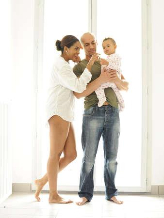 metis: metis family