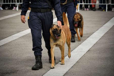 police dog Banque d'images