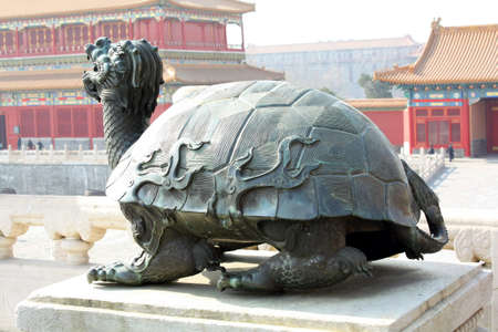carapace: turtle carve in china